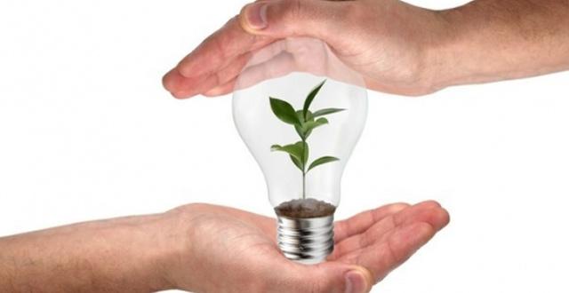 ampoule ecologique